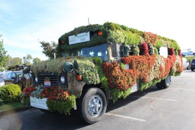 meadow view growers blooming bus